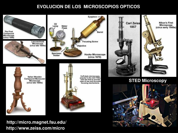 EVOLUCION DE LOS  MICROSCOPIOS OPTICOS