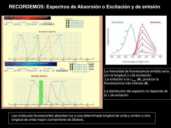 RECORDEMOS: Espectros de Absorsión o Excitación y de emisión