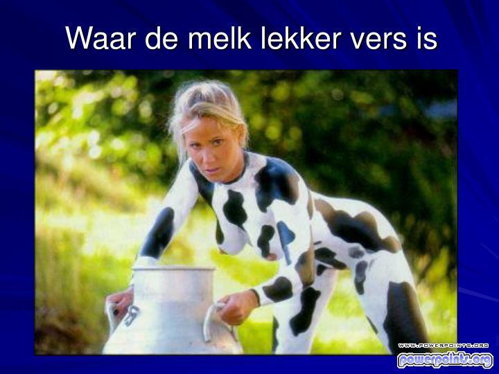 Waar de melk lekker vers is