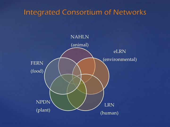 Integrated Consortium of Networks