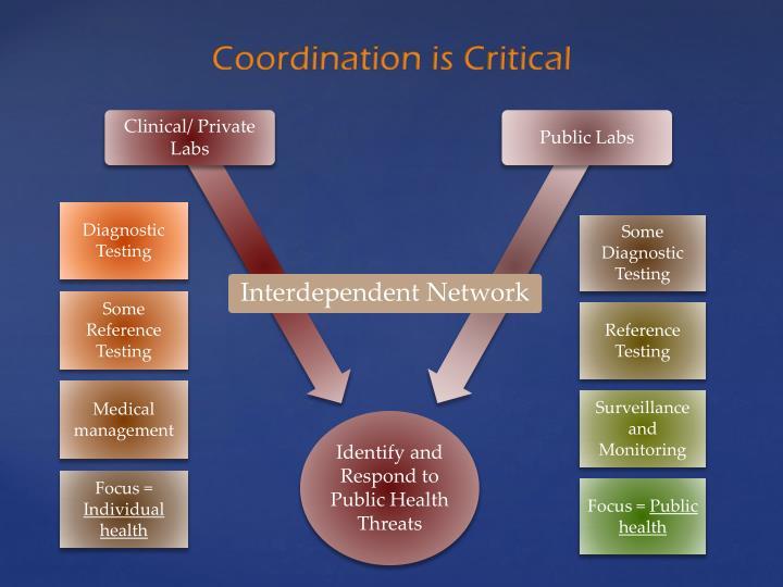 Interdependent Network