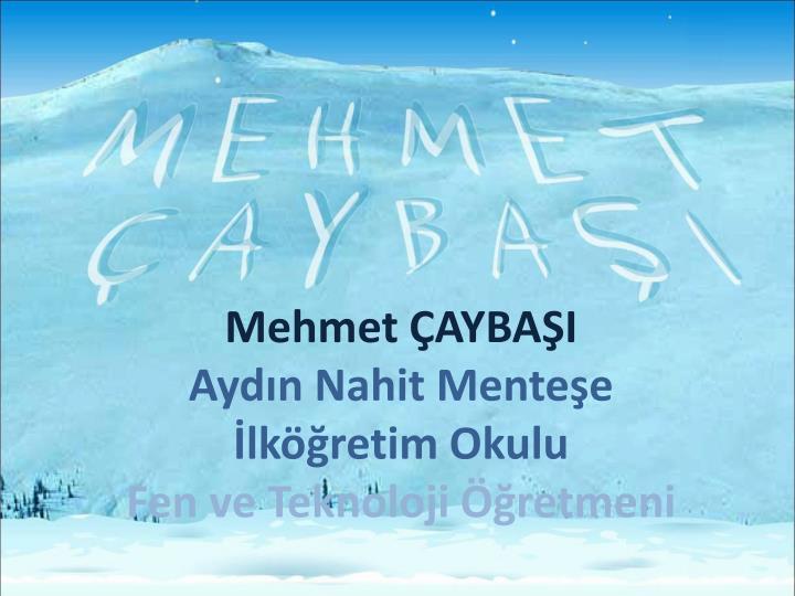 Mehmet ÇAYBAŞI