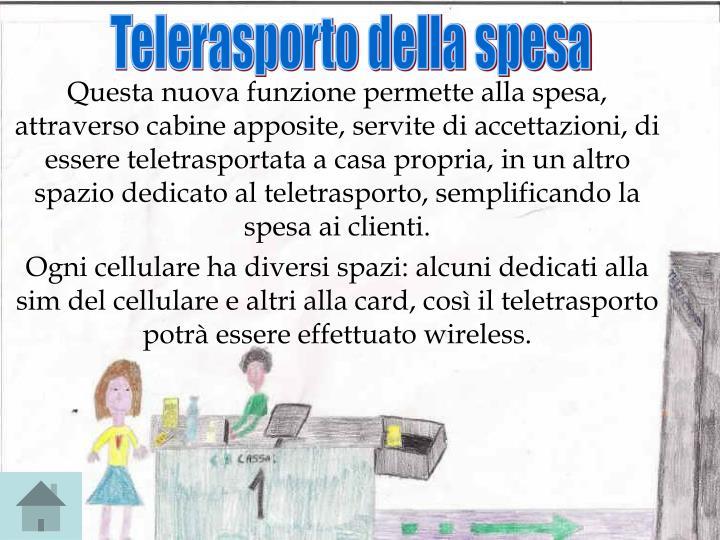Telerasporto della spesa