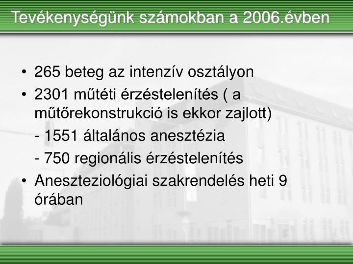 Tevékenységünk számokban a 2006.évben