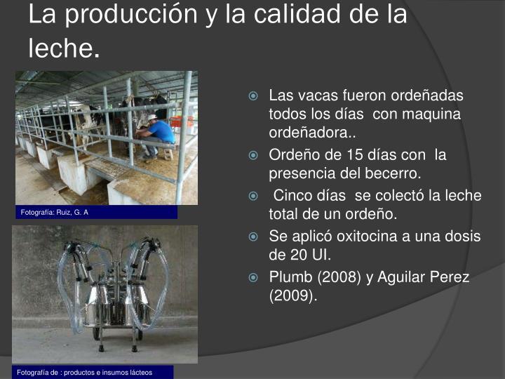 La producción y la calidad de la leche.