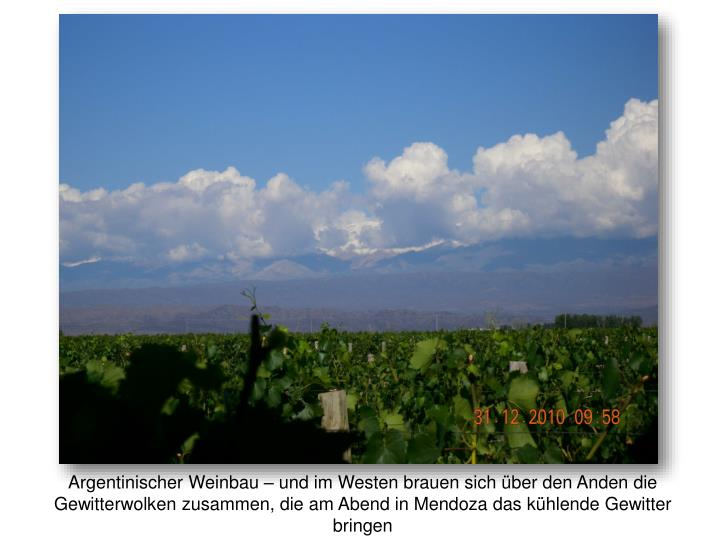 Argentinischer Weinbau – und im Westen brauen sich über den Anden die Gewitterwolken zusammen, die am Abend in Mendoza das kühlende Gewitter bringen