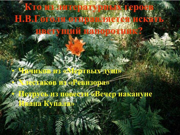 Кто из литературных героев Н.В.Гоголя отправляется искать цветущий папоротник?