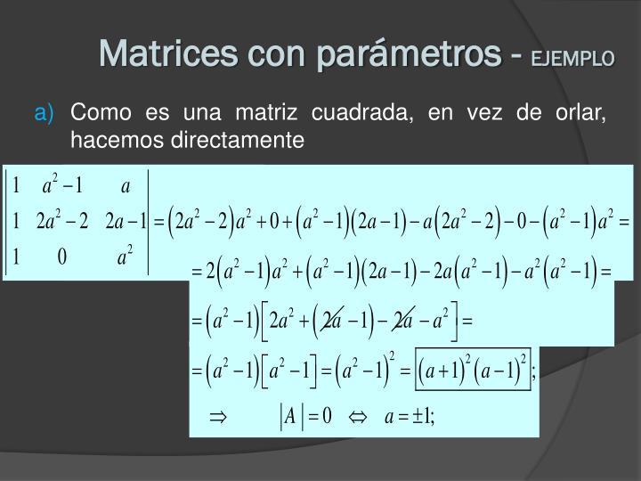 Matrices con parámetros -