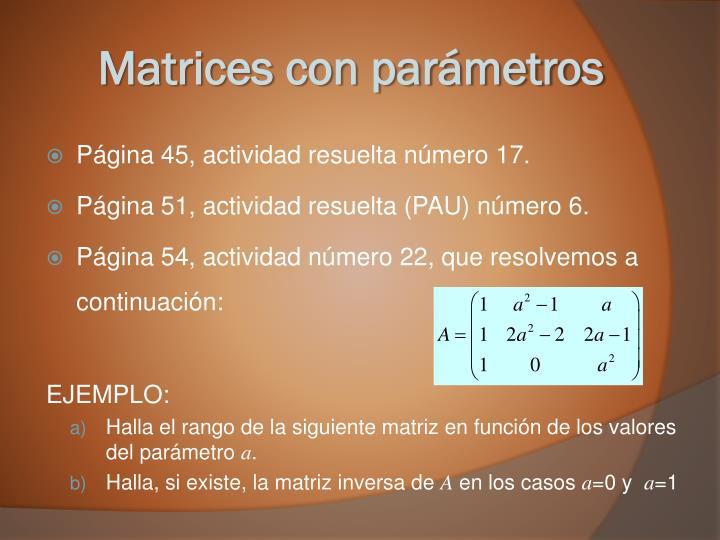 Matrices con parámetros