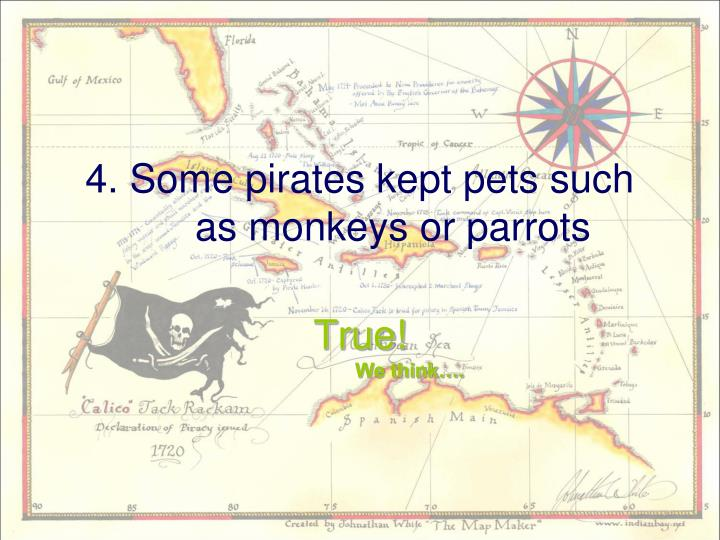 4. Some pirates kept pets such as monkeys or parrots