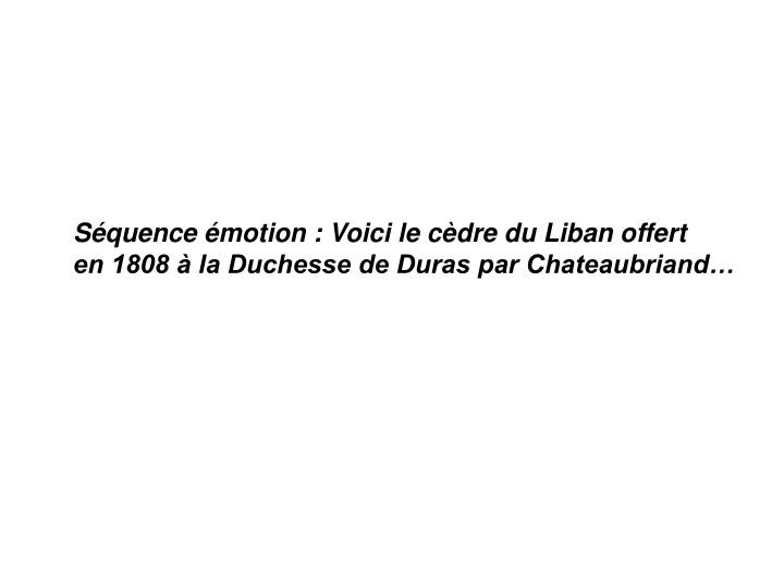Séquence émotion : Voici le cèdre du Liban offert