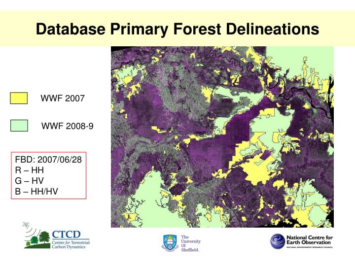 Database primary forest delineations