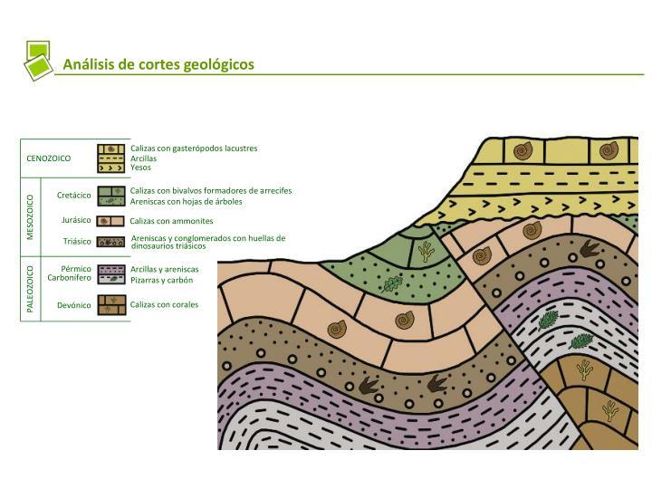 Calizas con gasterópodos lacustres