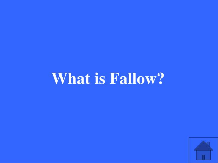 What is Fallow?