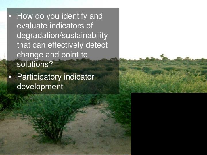 How do you identify and evaluate indicators of degradation/sustainability that can effectively detect change and point to solutions?