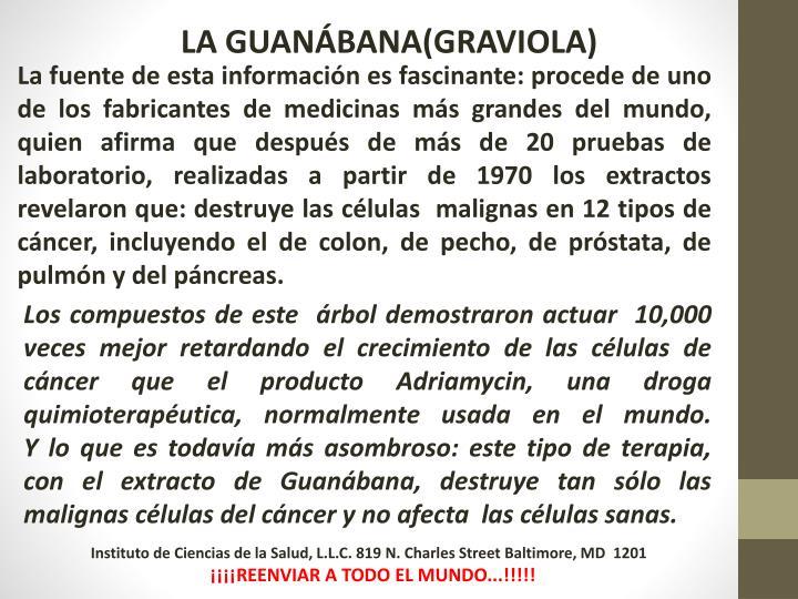 LA GUANÁBANA(GRAVIOLA)