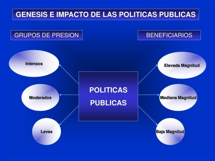 GENESIS E IMPACTO DE LAS POLITICAS PUBLICAS