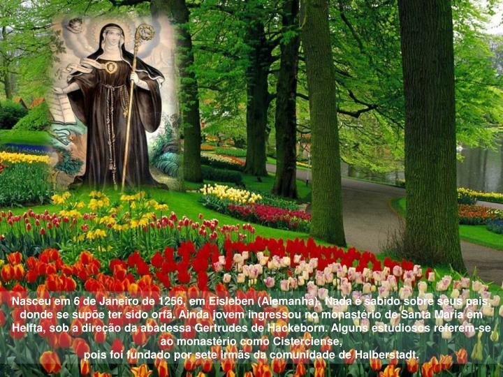 Nasceu em 6 de Janeiro de 1256, em Eisleben (Alemanha). Nada é sabido sobre seus pais, donde se supõe ter sido orfã. Ainda jovem ingressou no monastério de Santa Maria em Helfta, sob a direção da abadessa Gertrudes de Hackeborn. Alguns estudiosos referem-se ao monastério como Cisterciense,                                                                                                            pois foi fundado por sete irmãs da comunidade de Halberstadt.