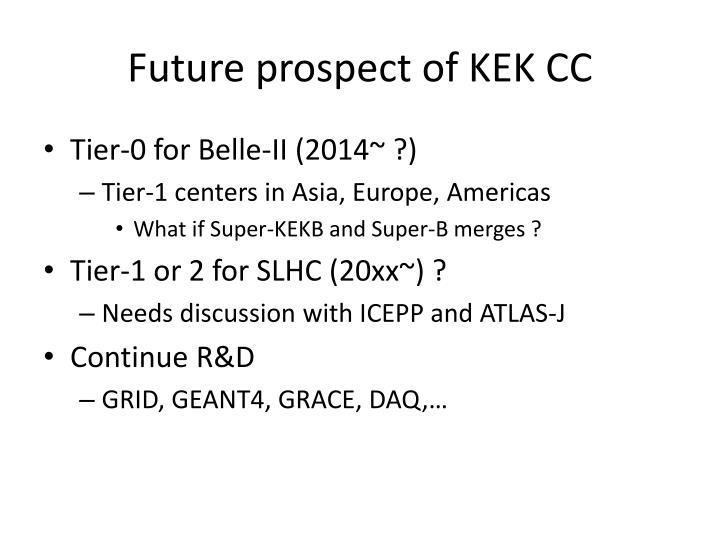 Future prospect of KEK CC