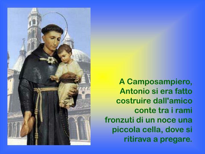 A Camposampiero, Antonio si era fatto costruire dall'amico conte tra i rami fronzuti di un noce una piccola cella, dove si ritirava a pregare.