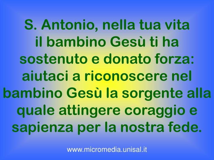 S. Antonio, nella tua vita