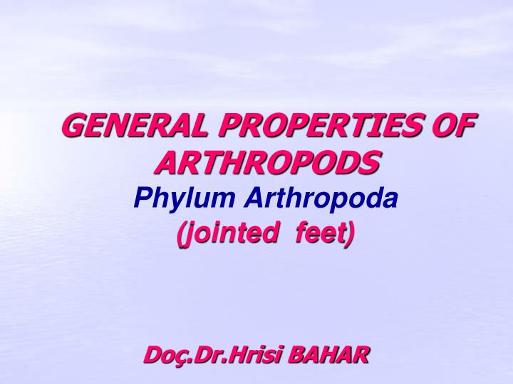 General properties of arthropods phylum arthropoda jointed feet