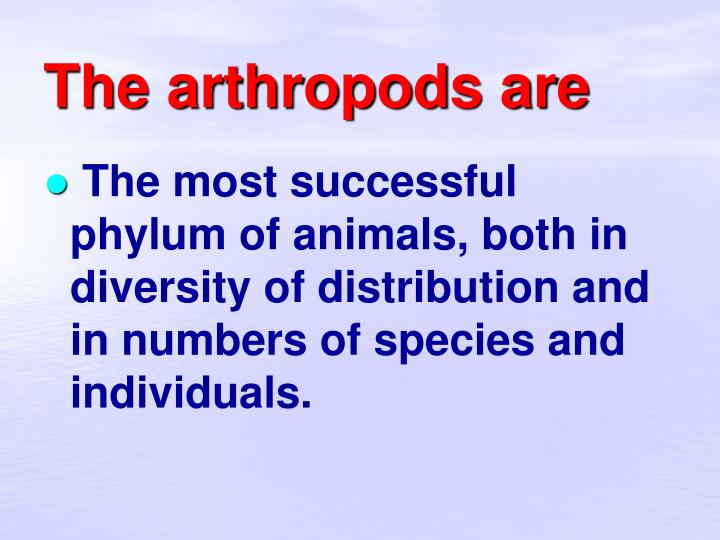 The arthropods are