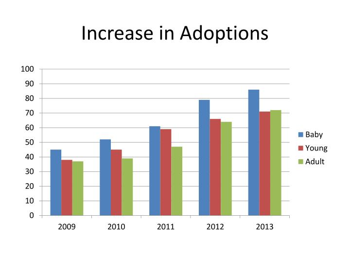 Increase in Adoptions