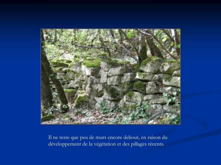 Il ne reste que peu de murs encore debout, en raison du développement de la végétation et des pillages récents.
