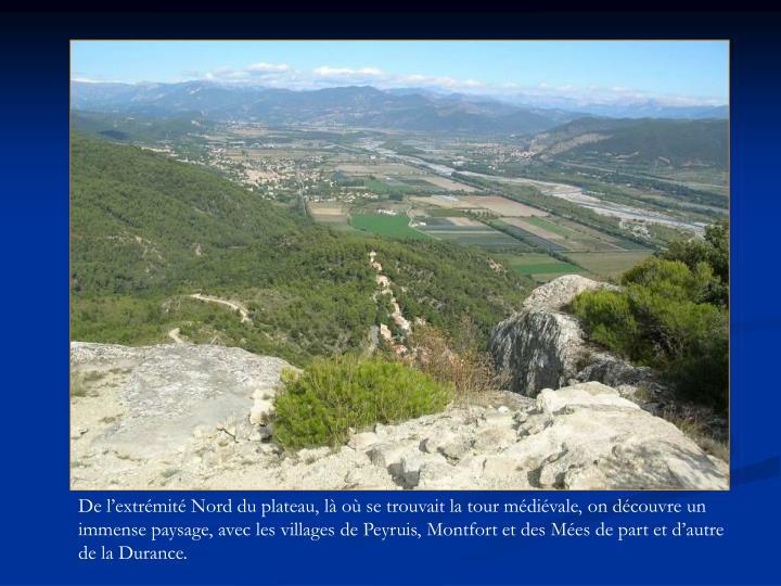 De l'extrémité Nord du plateau, là où se trouvait la tour médiévale, on découvre un immense paysage, avec les villages de Peyruis, Montfort et des Mées de part et d'autre de la Durance.