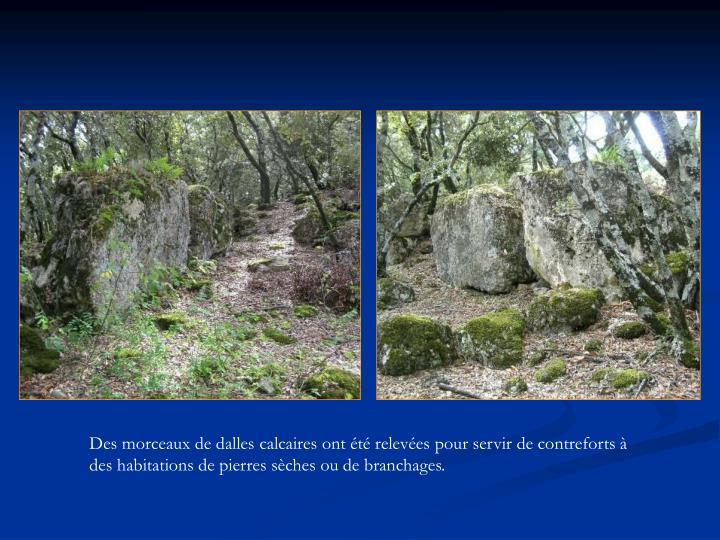 Des morceaux de dalles calcaires ont été relevées pour servir de contreforts à des habitations de pierres sèches ou de branchages.