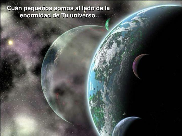 Cuán pequeños somos al lado de la enormidad de Tu universo.