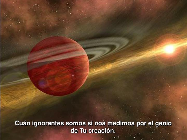 Cuán ignorantes somos si nos medimos por el genio de Tu creación.