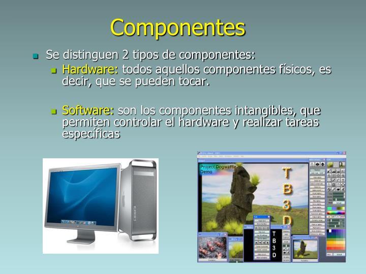 Se distinguen 2 tipos de componentes: