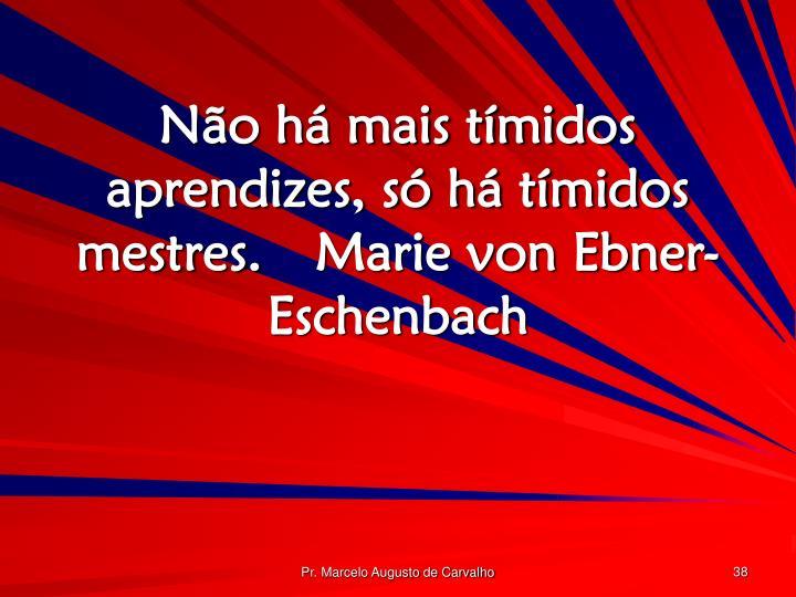 Não há mais tímidos aprendizes, só há tímidos mestres.Marie von Ebner-Eschenbach