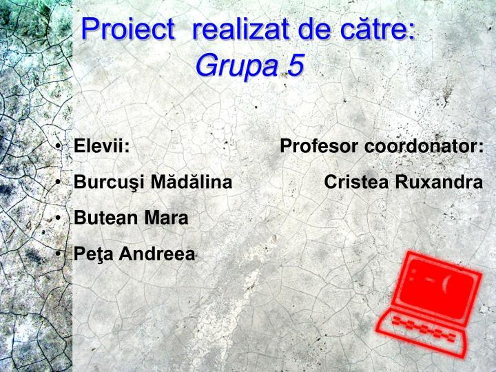 Proiect  realizat de către: