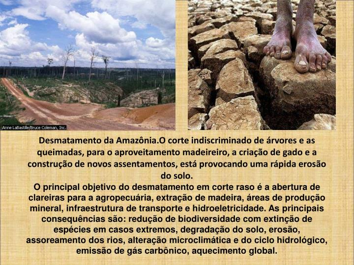 Desmatamento da Amazônia.O corte indiscriminado de árvores e as queimadas, para o aproveitamento madeireiro, a criação de gado e a construção de novos assentamentos, está provocando uma rápida erosão do solo.