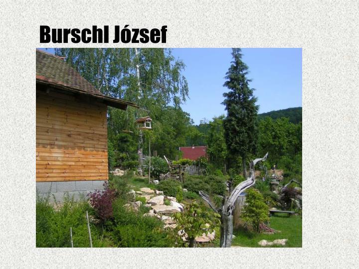 Burschl József