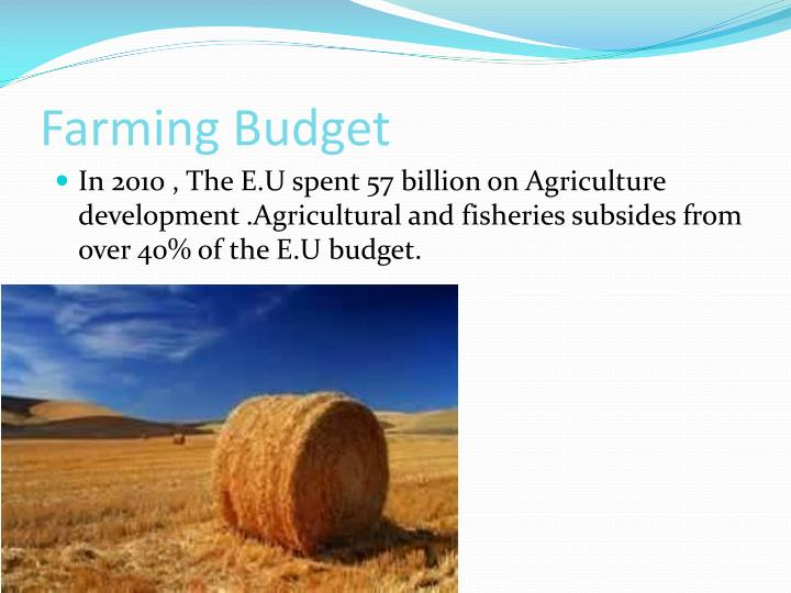 Farming Budget