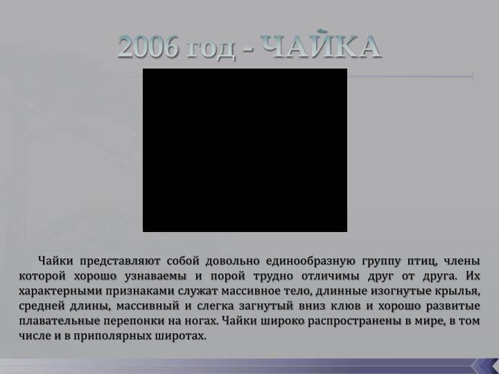 2006 год - ЧАЙКА