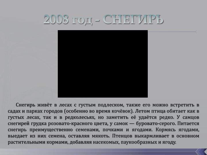 2008 год - СНЕГИРЬ