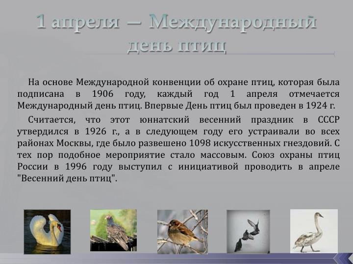 1 апреля — Международный день птиц
