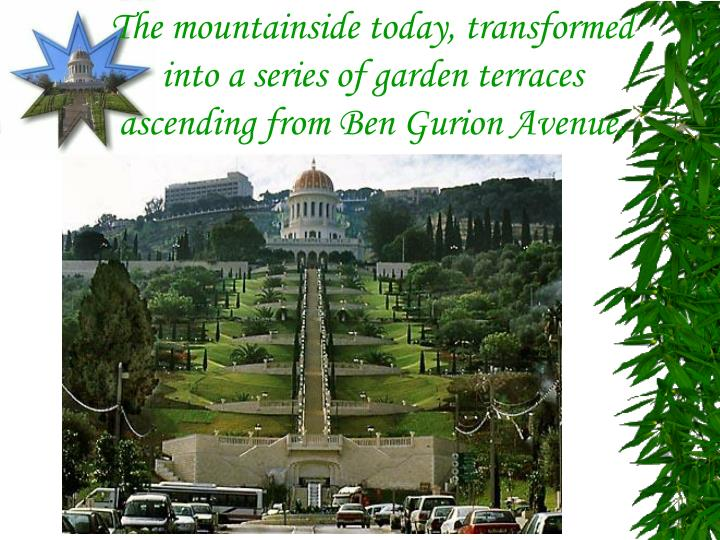 The mountainside today, transformed into a series of garden terraces ascending from Ben Gurion Avenue.