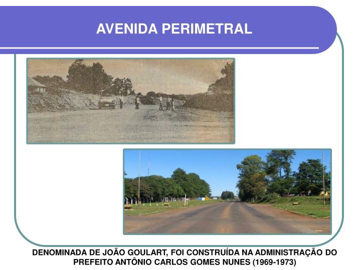 AVENIDA PERIMETRAL