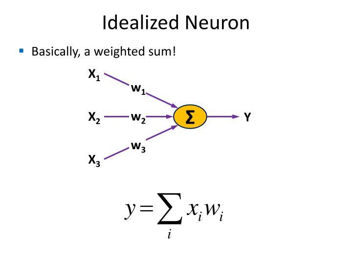Idealized Neuron