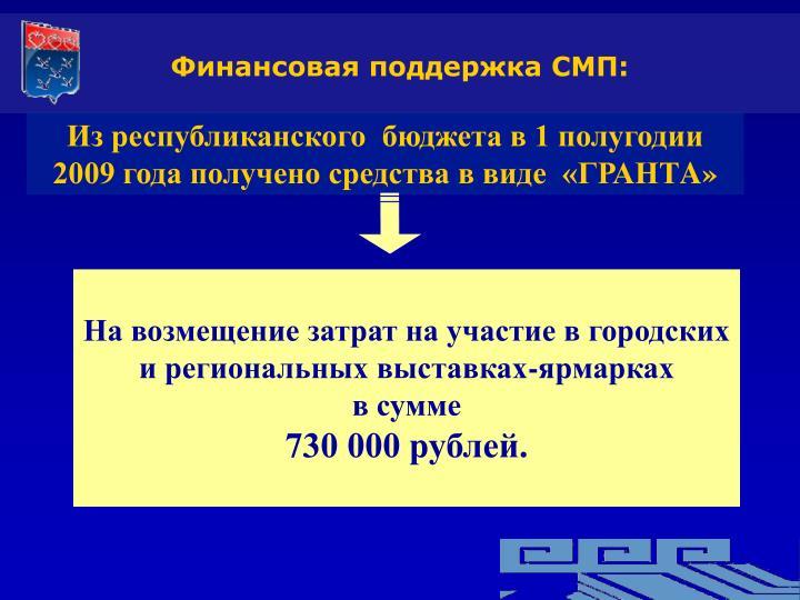 Финансовая поддержка СМП: