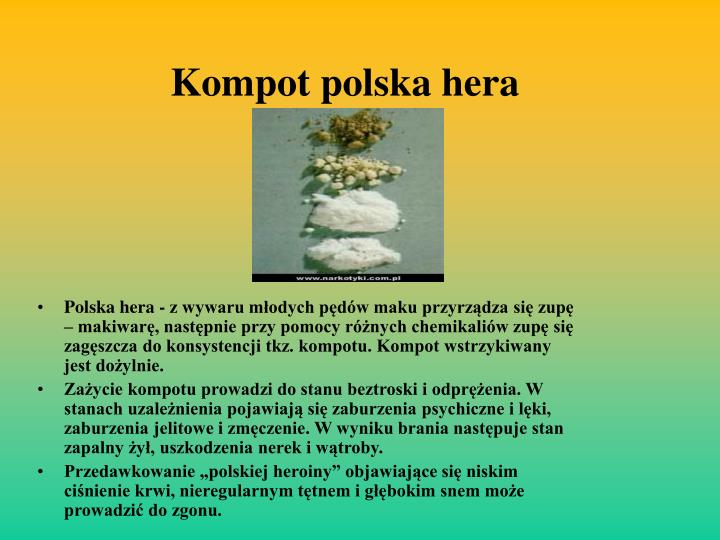 Kompot polska hera