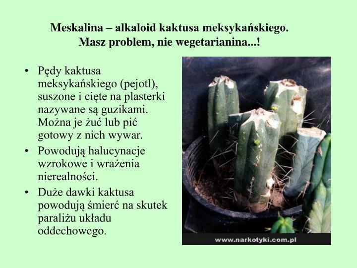 Meskalina – alkaloid kaktusa meksykańskiego.