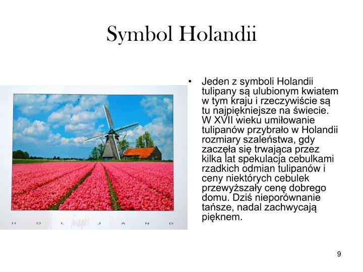 Symbol Holandii