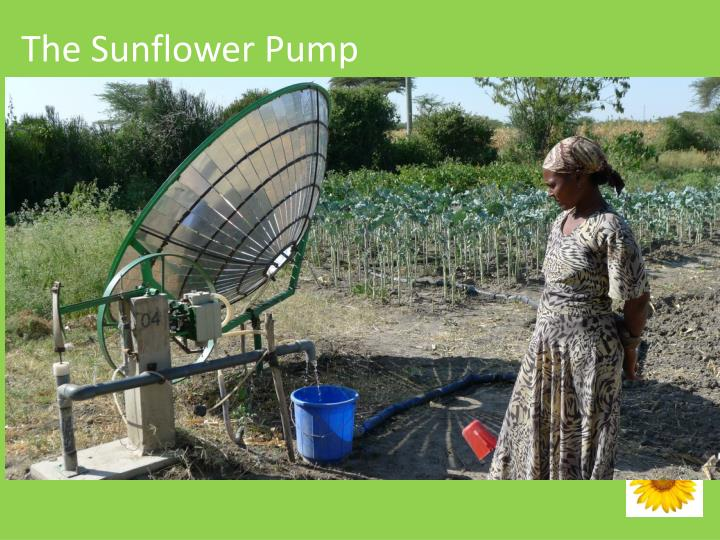 The Sunflower Pump